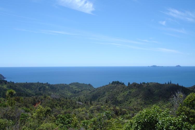 Mercury Bay from the Tairua-Whitianga Road on Coromandel Peninsula