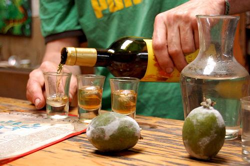 wine tasting shots purangi winery in new zealand