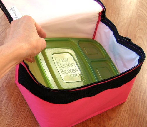 easy lunchboxes review
