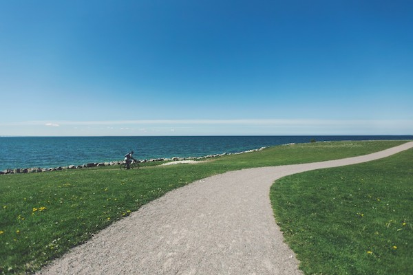 ride a bike - free ways to exercise without a gym membership