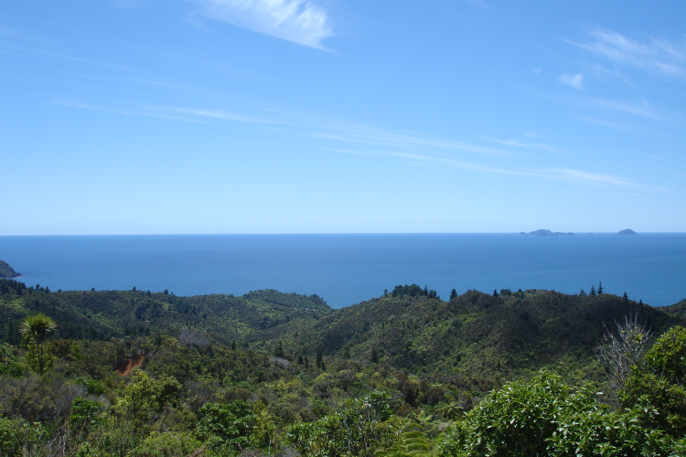 Mercury Bay from the Tairua-Whitianga Road on Coromandel Peninsula