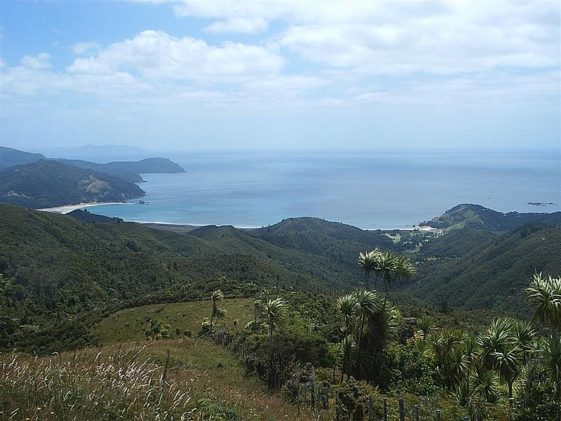 Waikawau Bay on Coromandel Peninsula