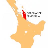Coromandel Roadtrip