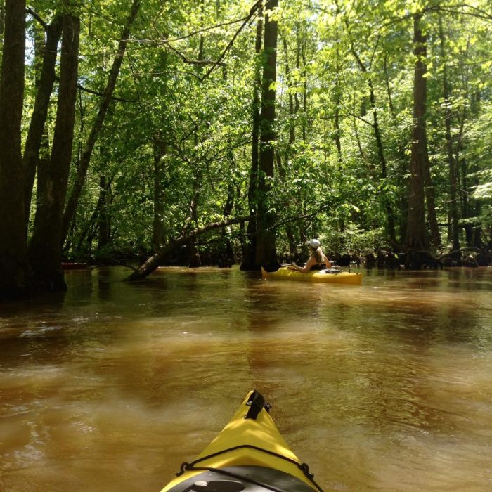 kayaked-a-lot