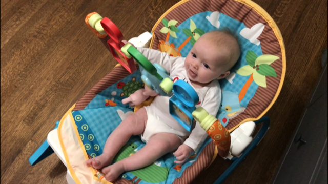 Fisher Price Infant-to-Toddler Rocker Seat Review